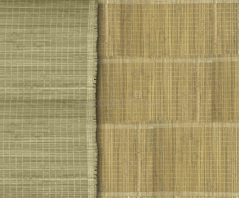 Tiras de bambu verdes e amarelas Earthy fotografia de stock