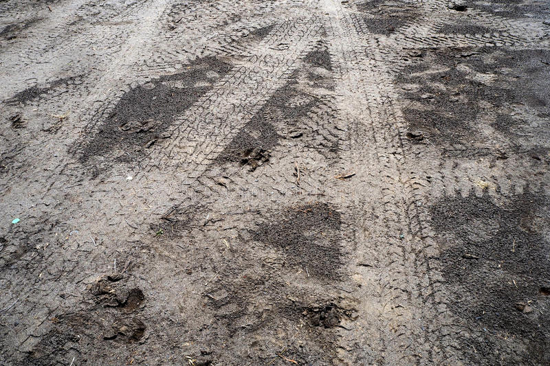 Tire print. In the off road way stock photo