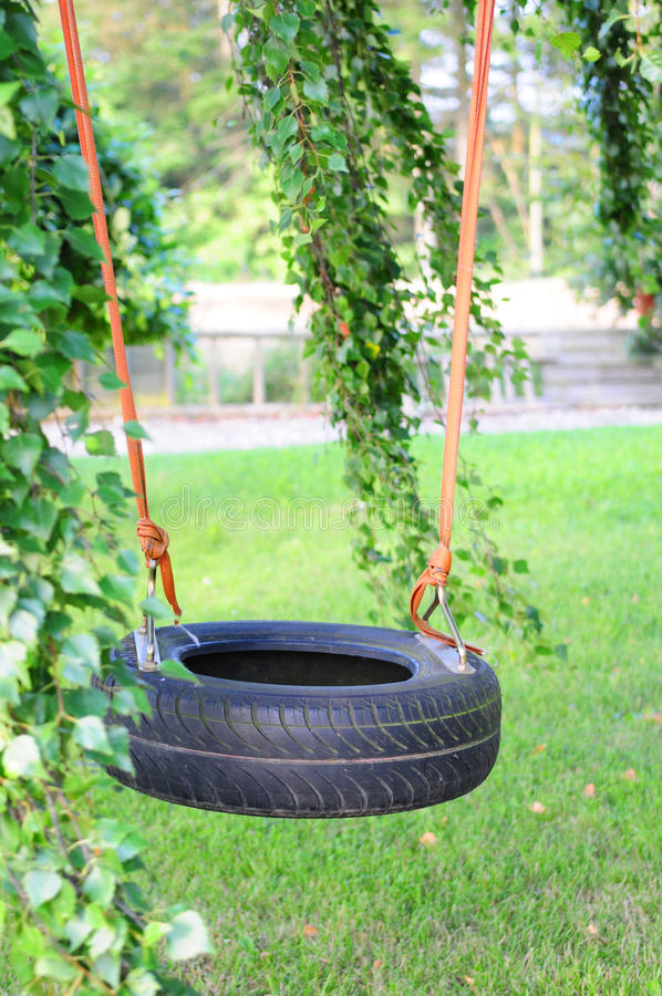 Download Tire swing stock photo. Image of young, high, freedom - 10799790