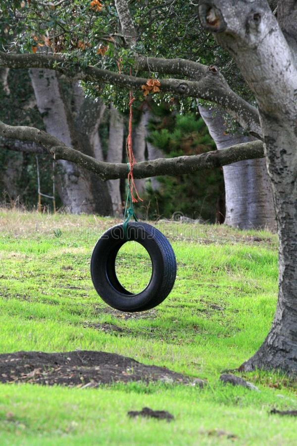 Download Tire Swing stock photo. Image of kids, grass, children - 1599280