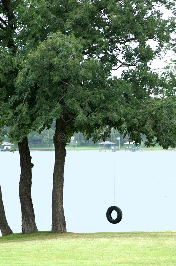 Free Tire Swing Royalty Free Stock Photography - 996697