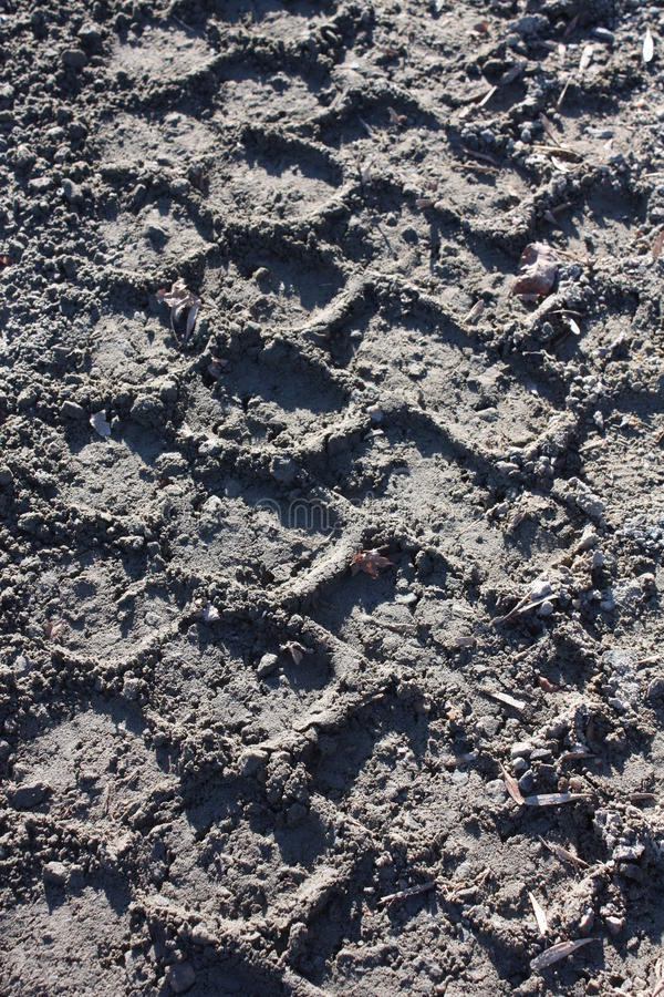 Tire track in mud royalty free stock photo
