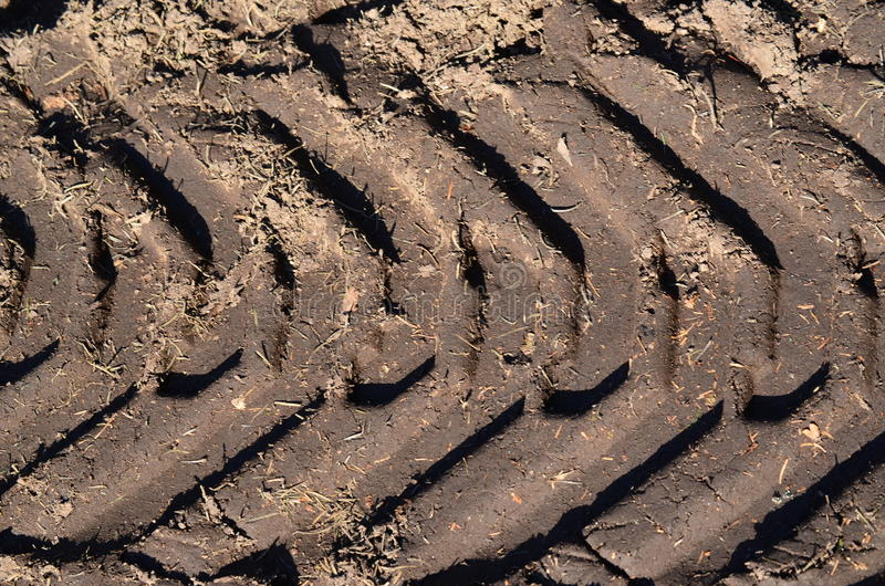 Download Tire tracks in the dirt stock image. Image of agriculture - 89923875