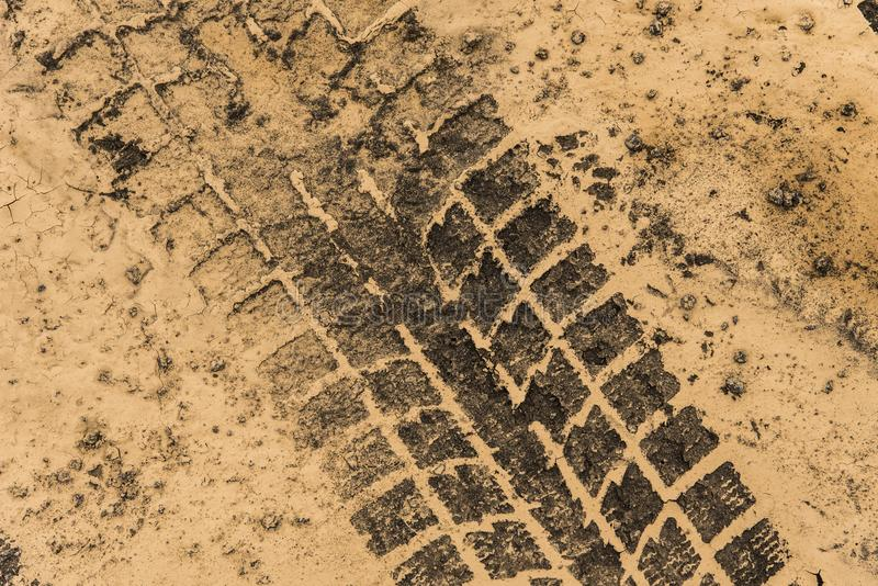 Tire tracks in Dry Mud royalty free stock photo