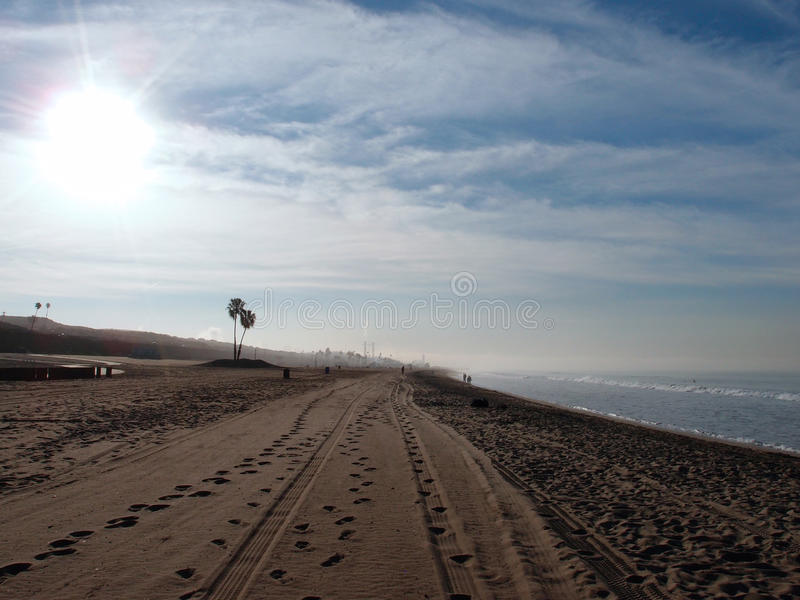 Tire tracks and footprints in the sand with palm trees and power royalty free stock photo