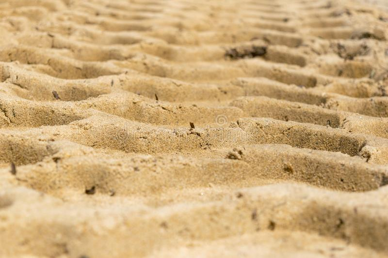 Tire tracks form a pattern on a sandy beach royalty free stock image