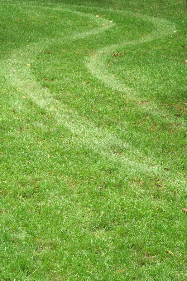 Tire tracks in the grass royalty free stock photos