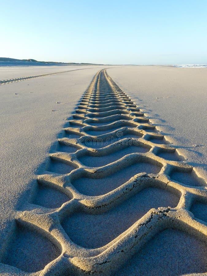 Tire tracks on smooth sandy deserted beach royalty free stock photos