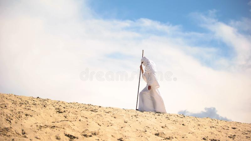Tired Bedouin with staff walking in hot desert, climate change, global warming royalty free stock photos