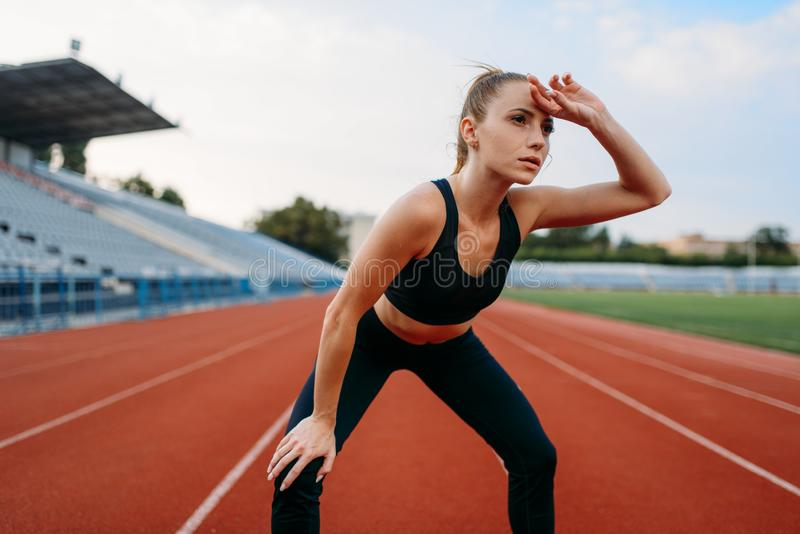 Tired female jogger, training on stadium. Tired female jogger in sportswear, training on stadium. Woman doing stretching exercise before running on outdoor arena stock photos