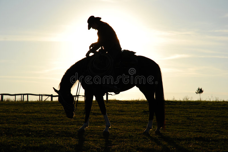 Tired man and horse royalty free stock image