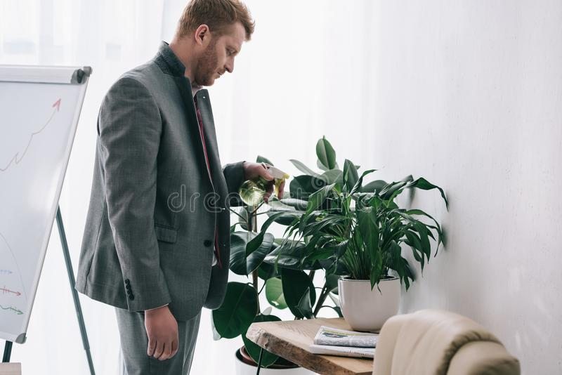 tired untidy businessman watering plant stock photo