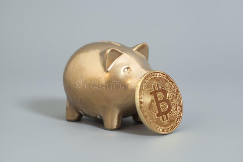 Tirelire d'or avec une pièce de monnaie d'or de Bitcoin (nouveau mone virtuel photos libres de droits