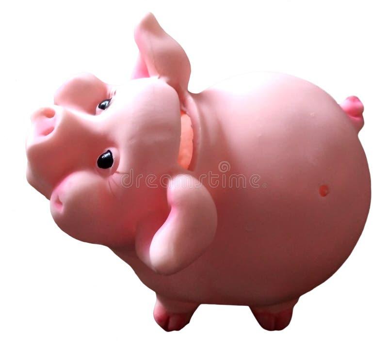 Tirelire de jouet porcin avec du charme mignon, symbole 2019 photo libre de droits