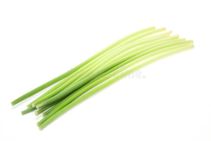 Tiri dell'aglio fotografie stock libere da diritti