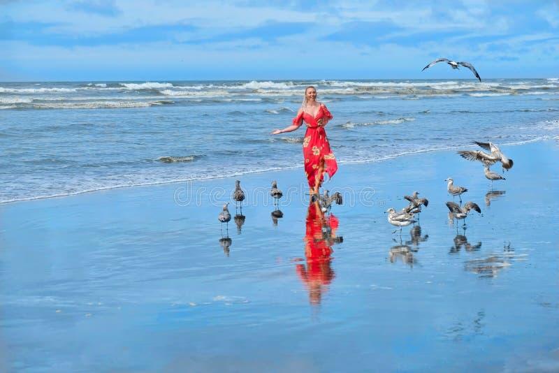 Tiri la vacanza in secco Funzionamento della donna sulla spiaggia dal mare con i gabbiani fotografia stock libera da diritti