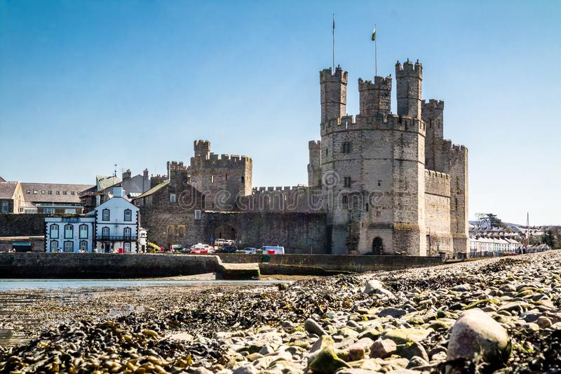 Tiri la vista in secco del castello storico Caernafon, Gwynedd Galles - nel Regno Unito immagine stock