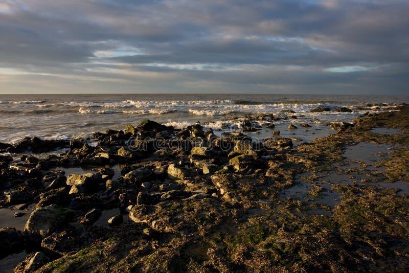 Tiri nel Belgio fotografia stock libera da diritti