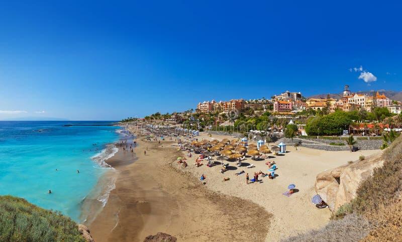 Tiri nell'isola di Tenerife - canarino fotografia stock