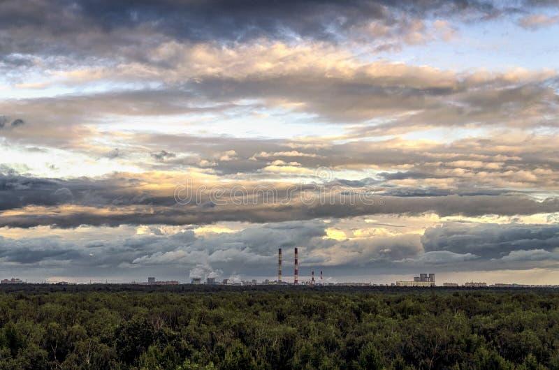 Tiro aéreo bonito de uma floresta grossa e de um céu nebuloso excitante foto de stock