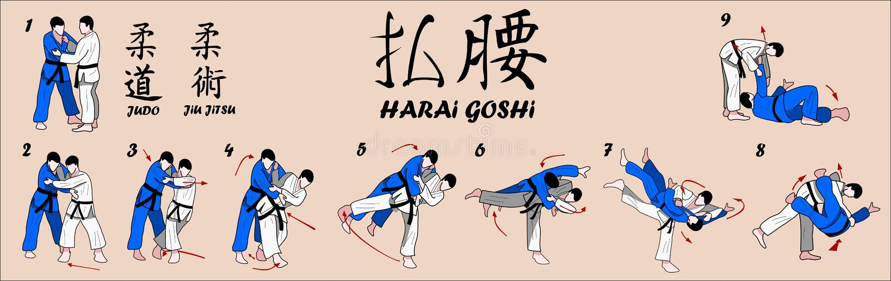 Tiro ampio dell'anca di judo illustrazione di stock
