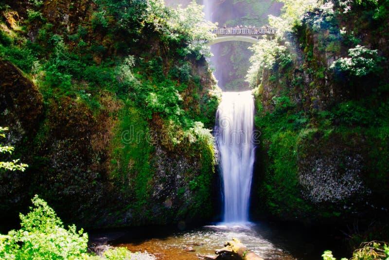 Tiro ancho hermoso de una cascada clara blanca pura fina que vierte en un lago rodeado por el verdor imágenes de archivo libres de regalías