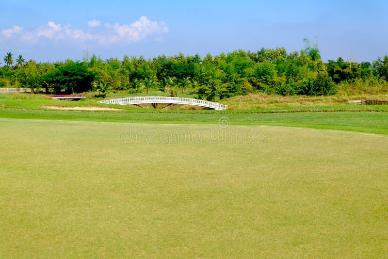 Tiro in buca verde nel paesaggio del campo da golf fotografia stock libera da diritti