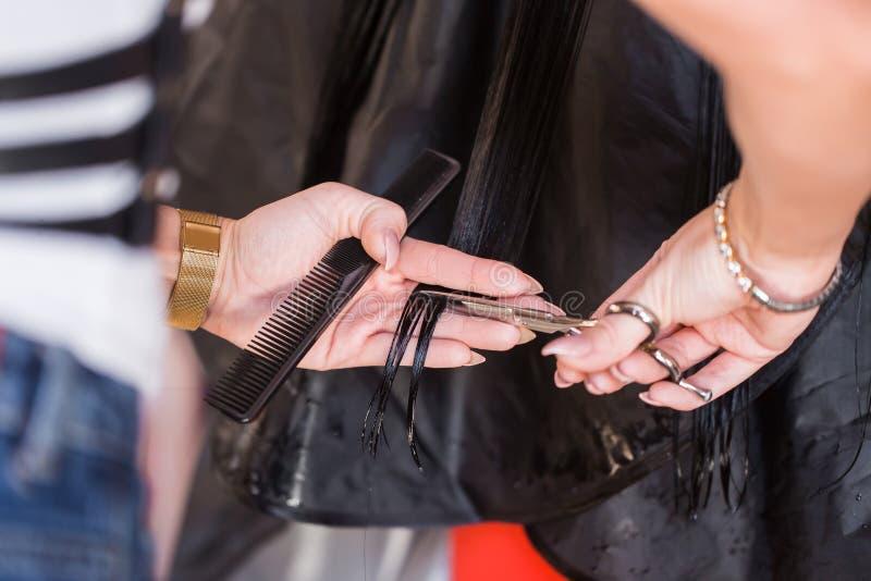 Tiro colhido de um cabelo dos clientes do corte do cabeleireiro da fêmea com as tesouras no salão de beleza Tratamento dos termas imagens de stock royalty free