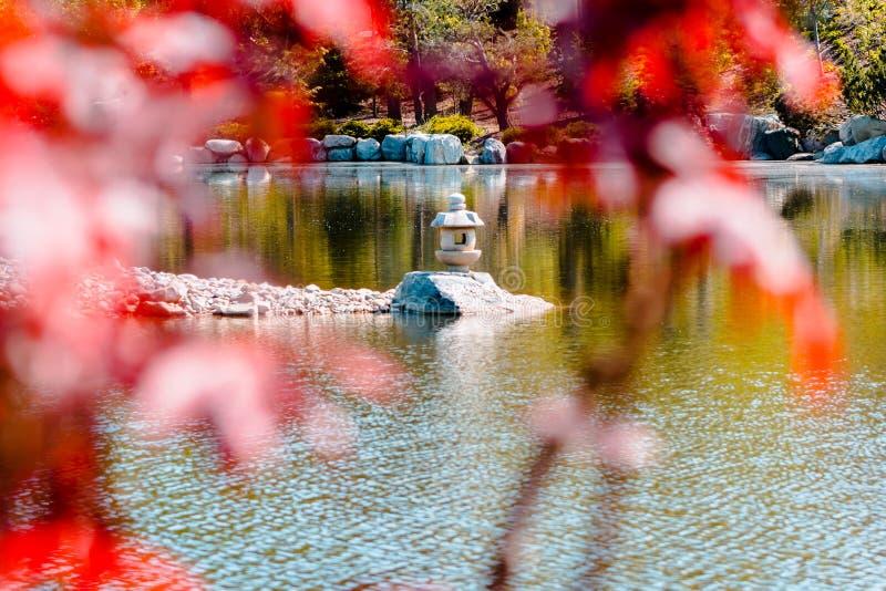 Tiro da estátua da lanterna disparada através das árvores no jardim japonês em Frederik Meijer Gardens foto de stock