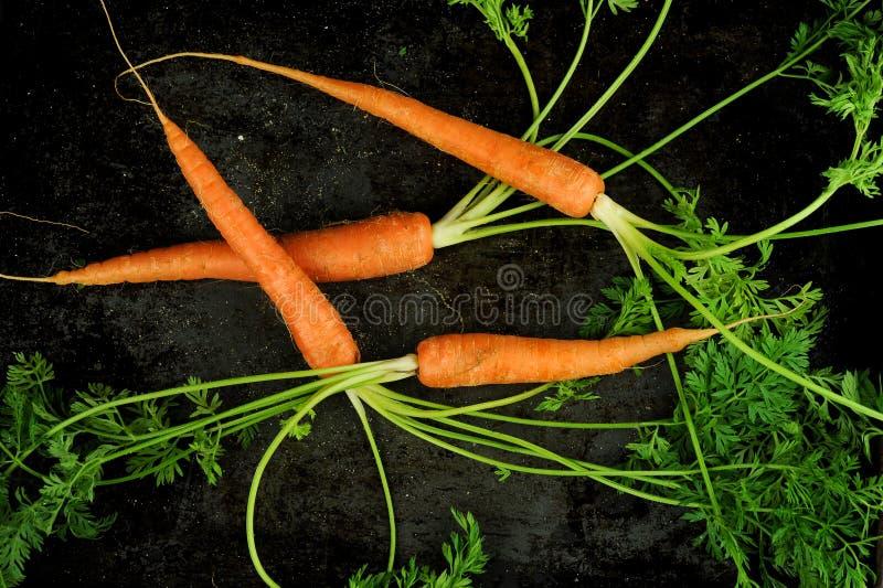 Tiro de arriba de zanahorias fotografía de archivo libre de regalías