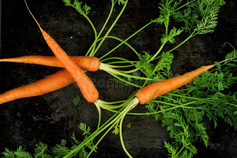 Tiro de arriba de zanahorias imagen de archivo libre de regalías