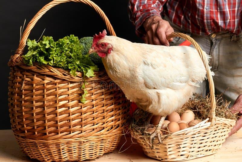 Tiro del estudio del anuncio para la granja local, con las frutas orgánicas, verduras, huevos fotografía de archivo
