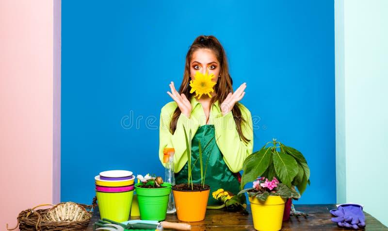Tiro del estudio del establecimiento de la flor Florista Small Business Mujer chocada por su planta imagenes de archivo