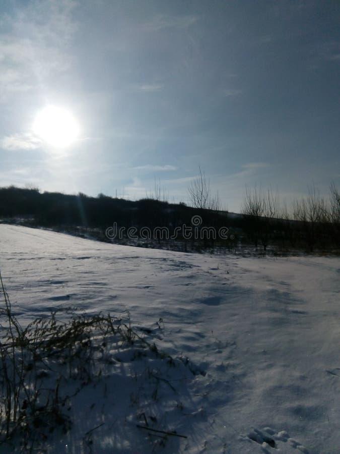 Tiro del paisaje de la nieve fotos de archivo