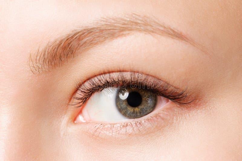 Tiro del primer del ojo femenino con maquillaje del día foto de archivo libre de regalías