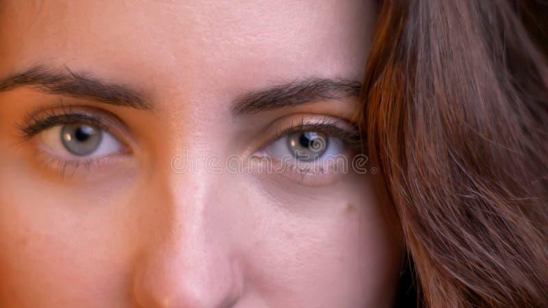 Tiro del primo piano di giovane femmina caucasica seducente con gli occhi che esaminano diritto la macchina fotografica con il fo fotografia stock