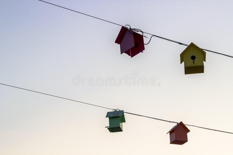 Tiro del primo piano di prospettiva delle case dolci dell'uccello a tempo di tramonto fotografia stock