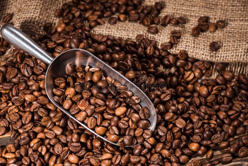 tiro do close-up da colher e dos feijões de café roasted derramados imagem de stock royalty free