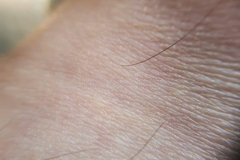tiro do pé humano da pele fotos de stock royalty free