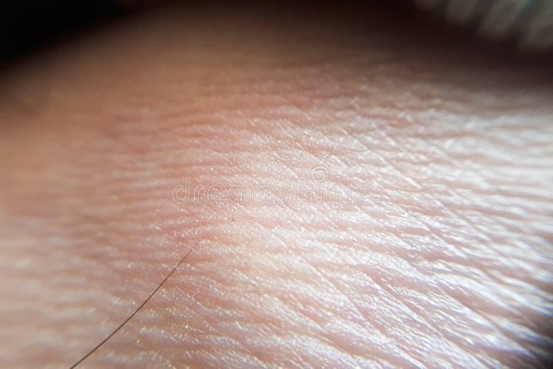 tiro do pé humano da pele fotografia de stock royalty free