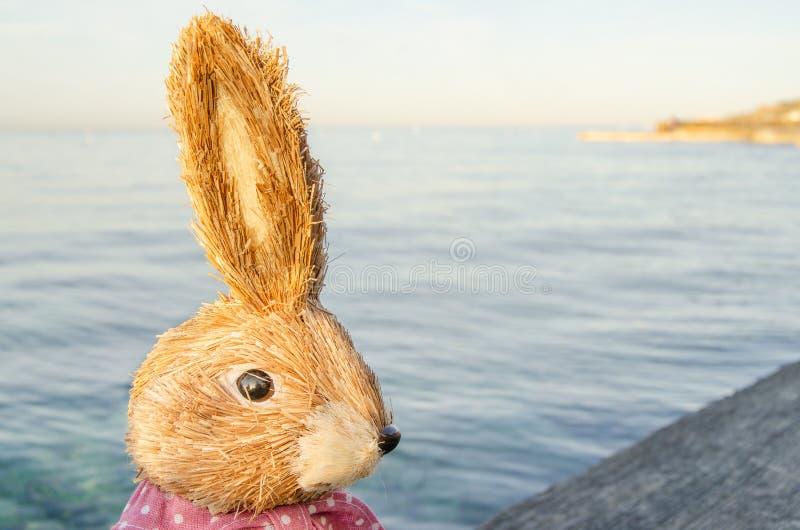 Tiro e mare capi svegli del coniglietto di pasqua nei precedenti fotografia stock