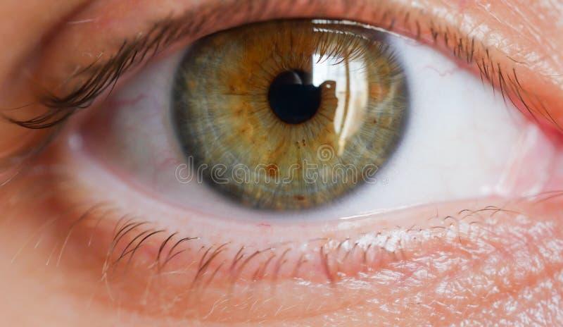 Tiro femenino del primer del ojo humano fotografía de archivo libre de regalías