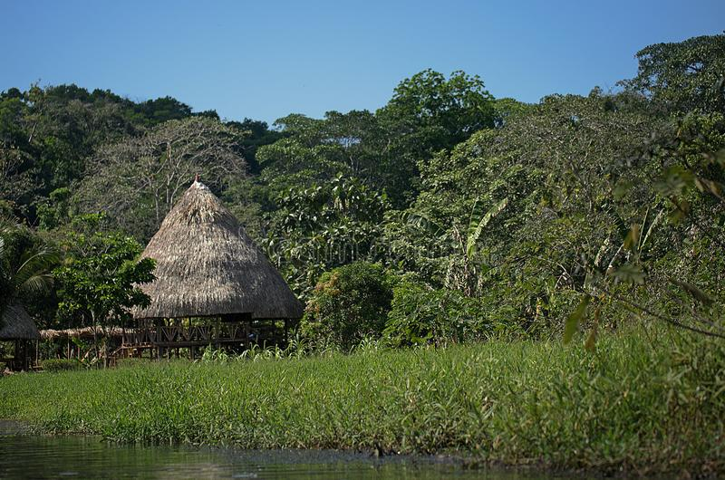 Tiro general de la cabina tropical en la selva con el río imagenes de archivo