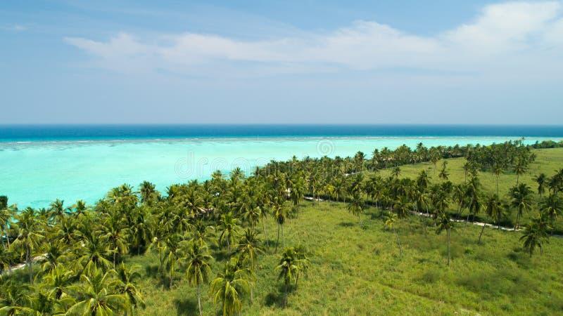 Tiro largo aéreo de uma praia com as árvores ao lado do mar com água azul clara em Maldivas imagens de stock royalty free