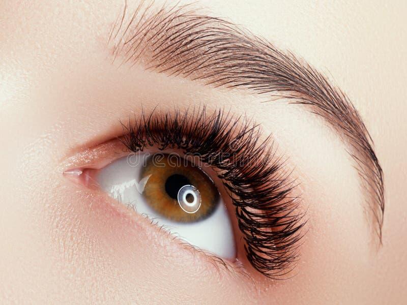 Tiro macro bonito do olho f?mea com as pestanas longas extremas e composi??o preta do forro fotos de stock