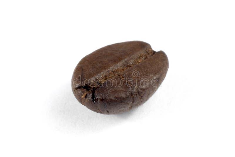 Tiro macro de um feijão de café isolado no branco imagem de stock royalty free