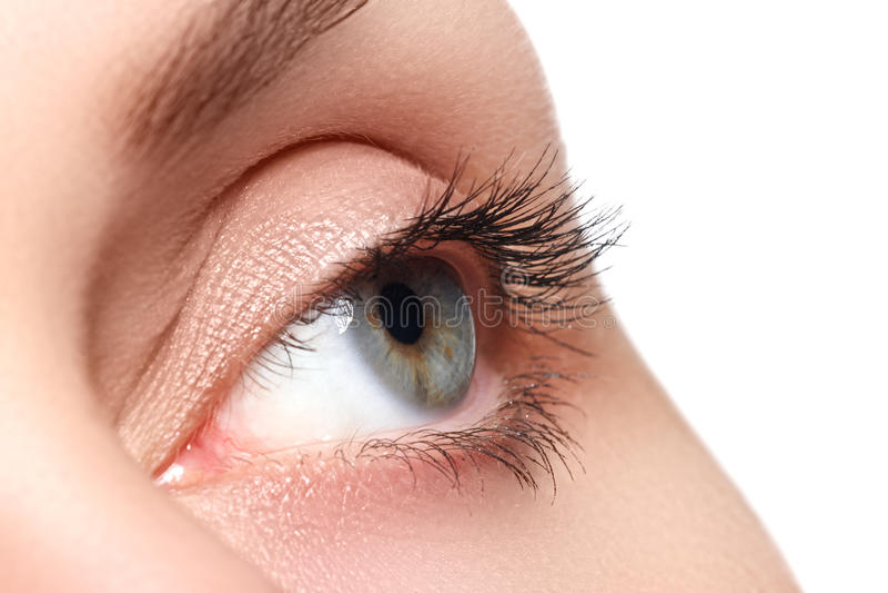 Tiro macro del ojo hermoso de la mujer con las pestañas extremadamente largas Visión atractiva, mirada sensual Ojo femenino con l imagenes de archivo