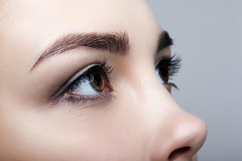 Tiro macro del primer de la cara femenina humana en fondo gris wo imagen de archivo libre de regalías