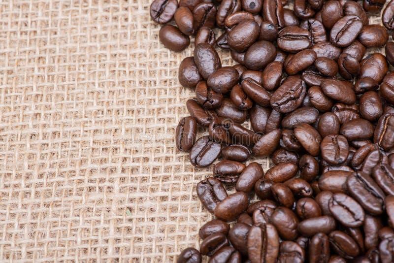 Tiro macro do café escuro médio liso orgânico do assado do feijão inteiro de Sumatra na serapilheira imagem de stock royalty free