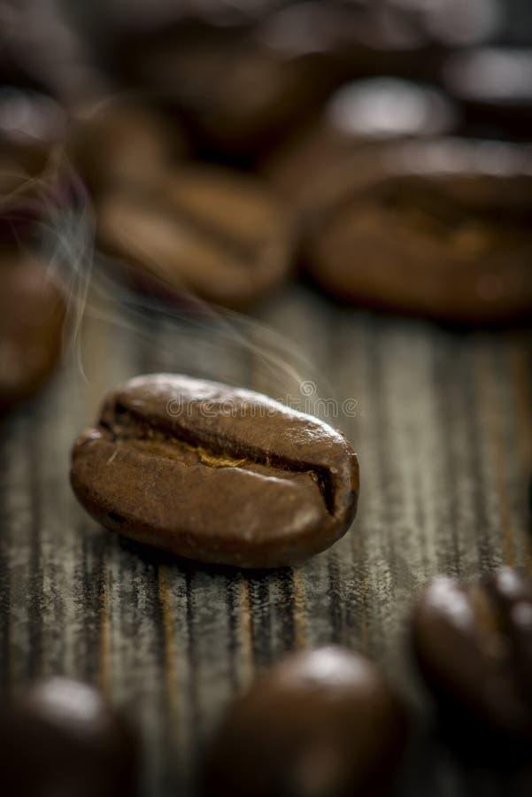 Tiro macro do feijão de café com vapor foto de stock royalty free